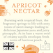 Apricot Nectar (Fragrant Orchard Collection) Glass Candle - Image 3