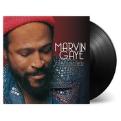 Marvin Gaye - Collected Vinyl