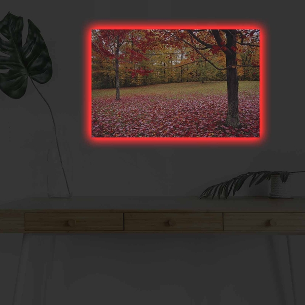 4570DHDACT-041 Multicolor Decorative Led Lighted Canvas Painting