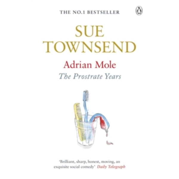 Adrian Mole: The Prostrate Years by Sue Townsend (Paperback, 2010)