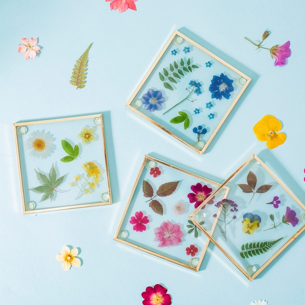 Sass & Belle (Set of 4) Pressed Flowers Glass Coasters
