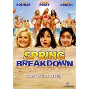 Spring Breakdown DVD