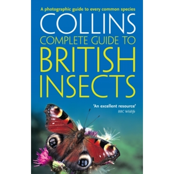 British Insects : A Photographic Guide to Every Common Species
