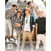 One Direction Airstream Mini Poster