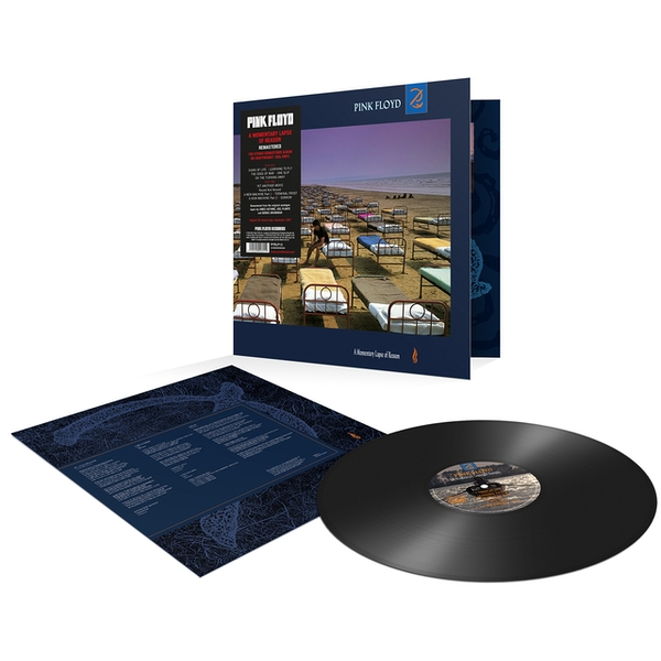 Pink Floyd - A Momentary Lapse Of Reason Vinyl