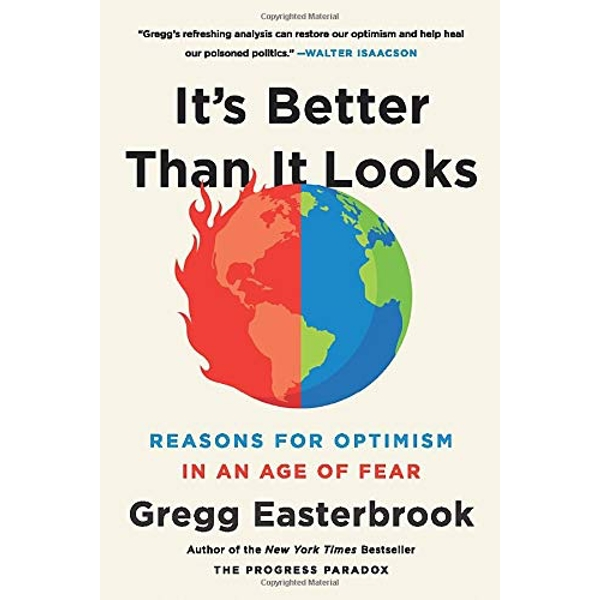 It's Better Than It Looks Reasons for Optimism in an Age of Fear Paperback 2019