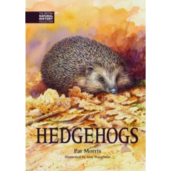Hedgehogs : 4