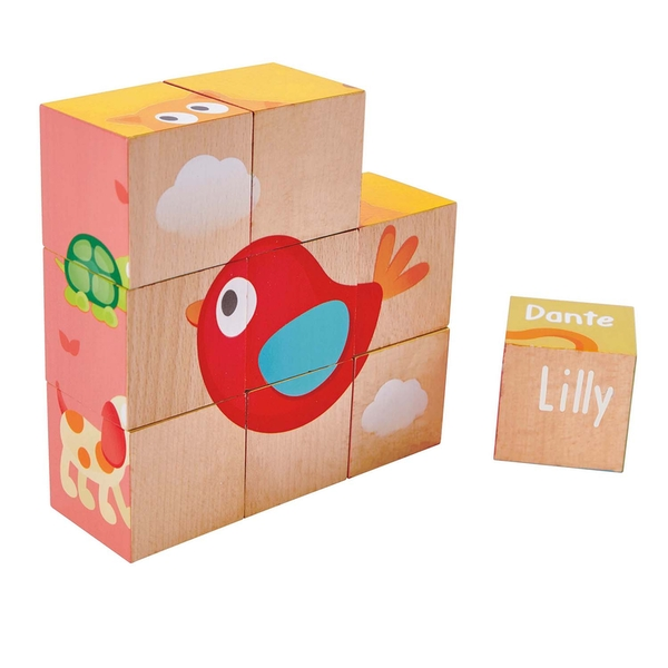 Hape Friendship Wooden Puzzle blocks