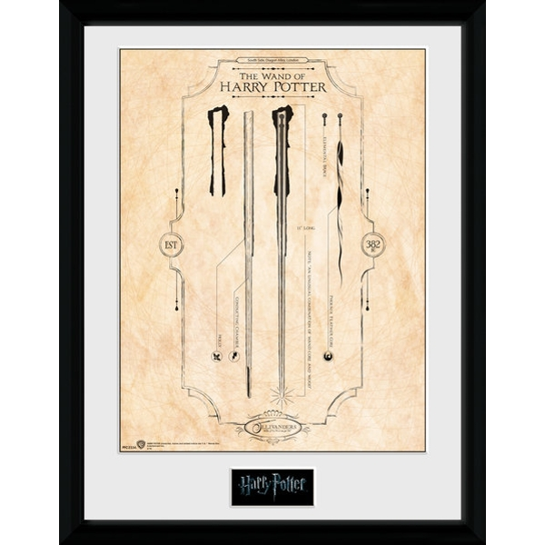 Harry Potter Harry's Wand Collector Print