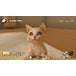 Little Friends Dogs & Cats Nintendo Switch Game - Image 2