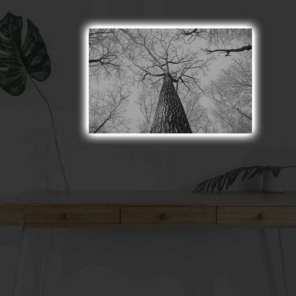 4570DHDACT-068 Multicolor Decorative Led Lighted Canvas Painting