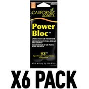 Ice (Pack Of 6) California Scents Power Bloc
