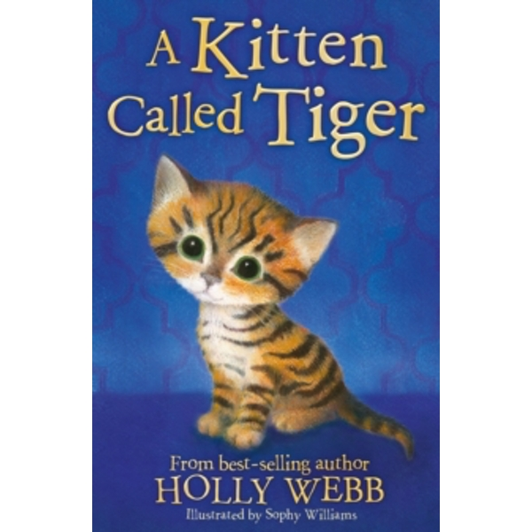A Kitten Called Tiger by Holly Webb (Paperback, 2017)