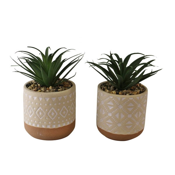Set of 2 Faux Succulents In Ceramic Pots