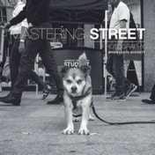 Mastering Street Photography by Brian Lloyd Duckett (Paperback, 2016)