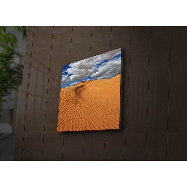 4040?ACT-40 Multicolor Decorative Led Lighted Canvas Painting