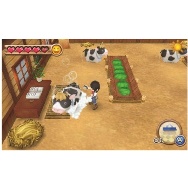 Harvest Moon A New Beginning Game 3DS - Image 5