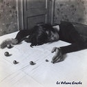 Le Volume Courbe - I Wish Dee Dee Ramone Was Here With Me Vinyl