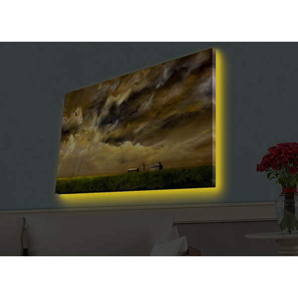 4570HDACT-049 Multicolor Decorative Led Lighted Canvas Painting