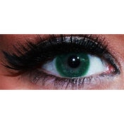 Persian Green 1 Day Coloured Contact Lenses (MesmerEyez Blendz)