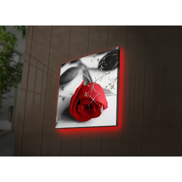 4040DACT-26 Multicolor Decorative Led Lighted Canvas Painting