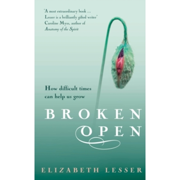 Broken Open: How difficult times can help us grow by Elizabeth Lesser (Paperback, 2004)