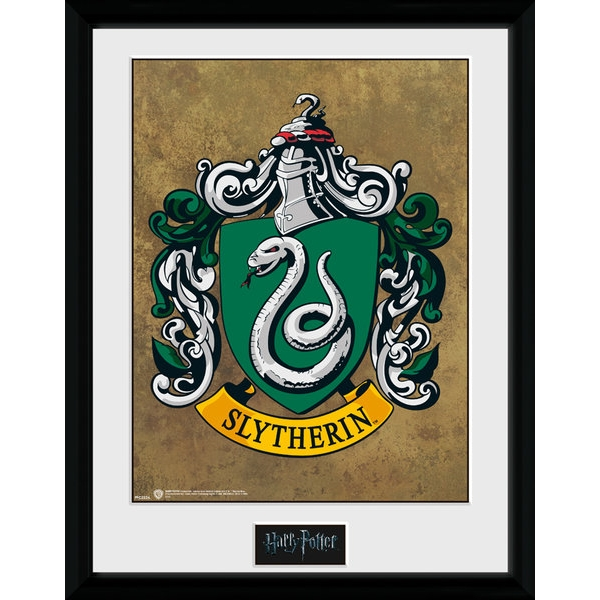 Harry Potter Slytherin Collector Print