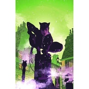 Catwoman A Celebration of 75 Years Hardcover