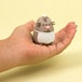Pusheen - Surprise Mini Figurine Blind Box (1 Figurine Supplied) - Image 3
