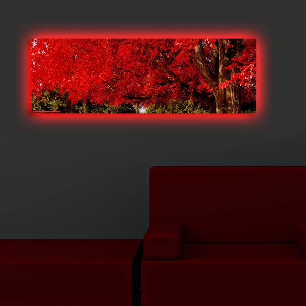 3090DACT-35 Multicolor Decorative Led Lighted Canvas Painting