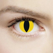 Wild Yellow Cat 1 Day Halloween Coloured Contact Lenses (MesmerEyez XtremeEyez)