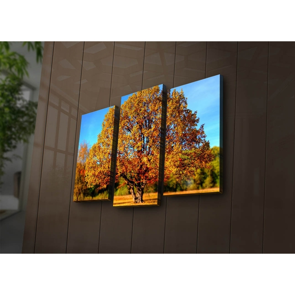 3PAT?ACT-26 Multicolor Decorative Led Lighted Canvas Painting (3 Pieces)