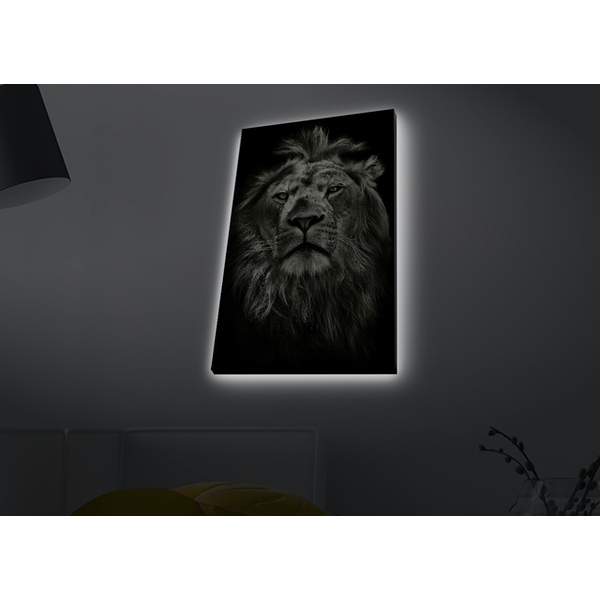 4570MDACT-058 Multicolor Decorative Led Lighted Canvas Painting