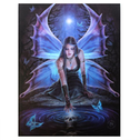 Small Immortal Flight Canvas Picture by Anne Stokes