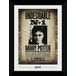 Harry Potter Undesirable No. 1 Collector Print - Image 2