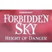 Forbidden Sky Board Game - Image 3
