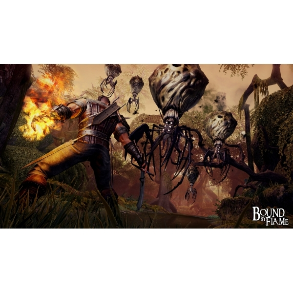 Bound By Flame PC Game - Image 2