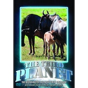 The Third Planet The Beginnings Of Life In The Great Savannah DVD