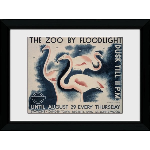 Transport For London The Zoo By Floodlight 50 x 70 Framed Collector Print