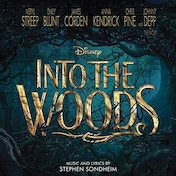 Various Artists - Into the Woods CD
