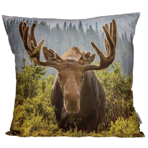 Moose Photo Cushion with Insert