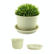 Plastic Plant Pots - Set of 10 | Pukkr Medium