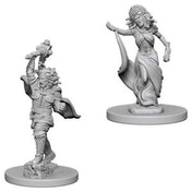Dungeons & Dragons Nolzur's Marvelous Unpainted Miniatures Medusas