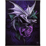 Small Dragon Beauty Canvas Picture by Anne Stokes