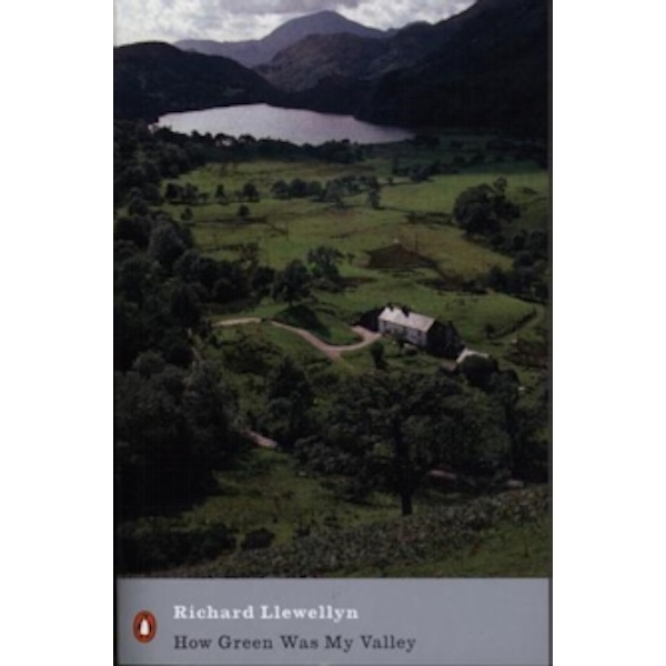 How Green Was My Valley by Richard Llewellyn (Paperback, 2001)
