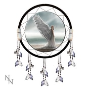 Spirit Guide Dreamcatcher