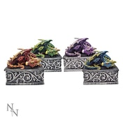 Dragon Safehold (Pack Of 4) Boxes