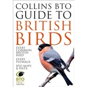 Collins BTO Guide to British Birds by Paul Sterry, Paul Stancliffe (Paperback, 2015)