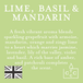 Lime, Basil & Mandarin (Polka Dot Collection) Tin Candle - Image 4