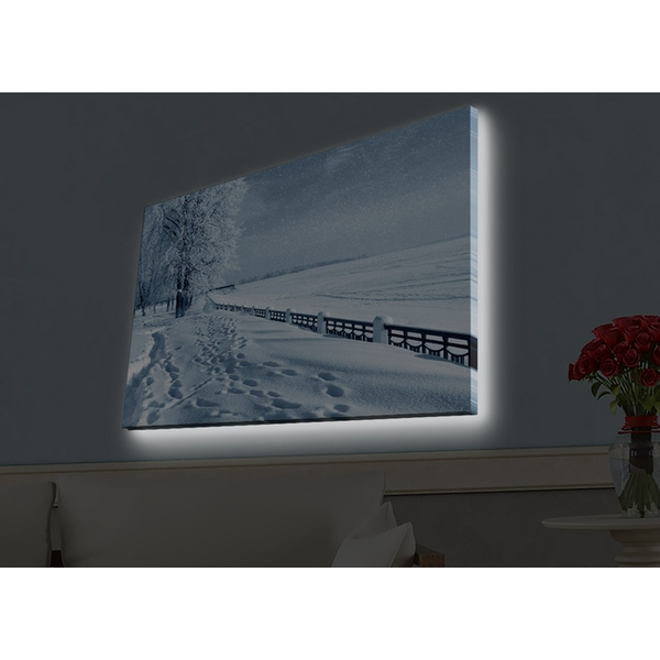 4570HDACT-045 Multicolor Decorative Led Lighted Canvas Painting